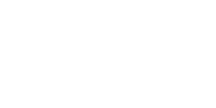 V.A.DAY